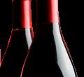 Kompletné vybavenie na výrobu vína